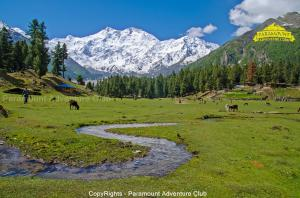 Fairy Meadows