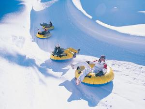 Snow Tubing Tour Packages